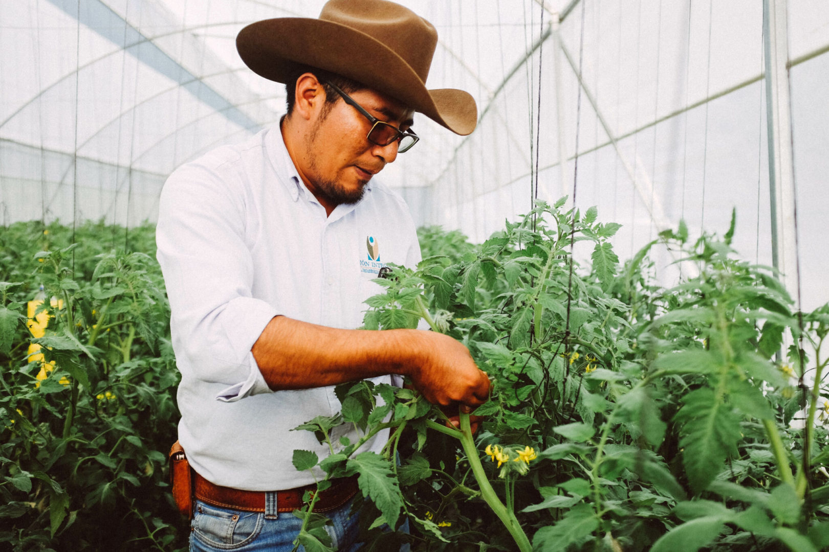 Jorge is an expert agronomist on staff with Plant With Purpose in Mexico. His mission is to teach others sustainable agriculture.