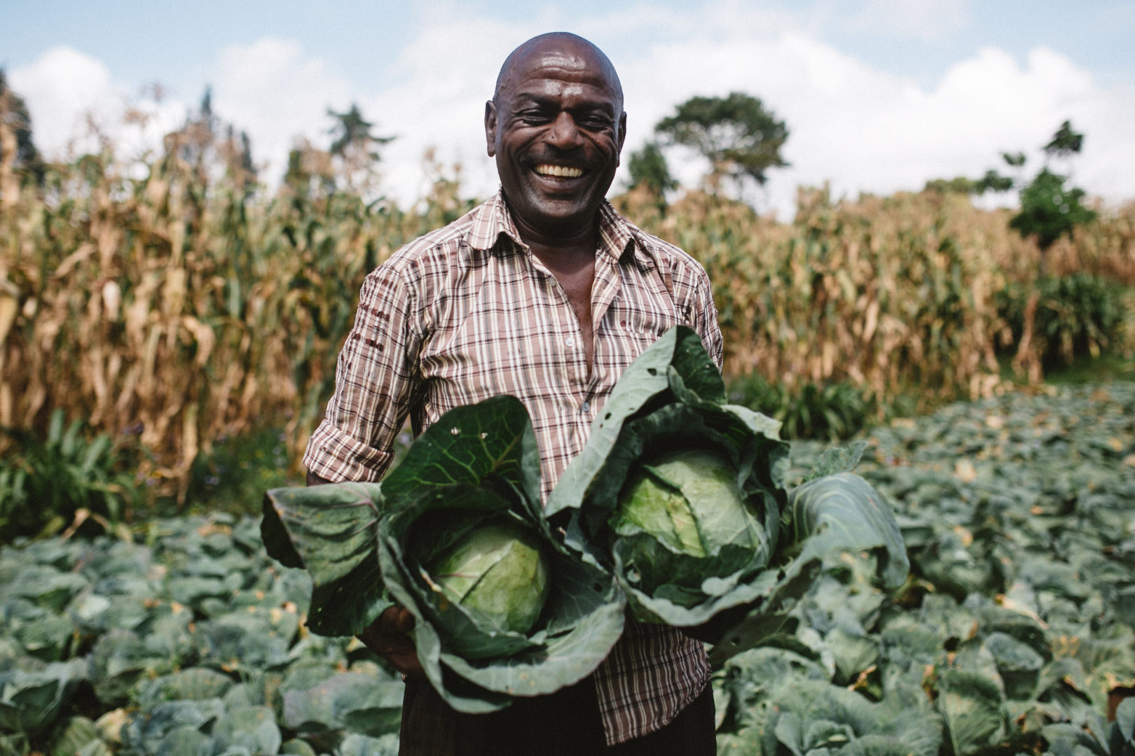 Mungubariko shows some of the growth from his most recent harvest.