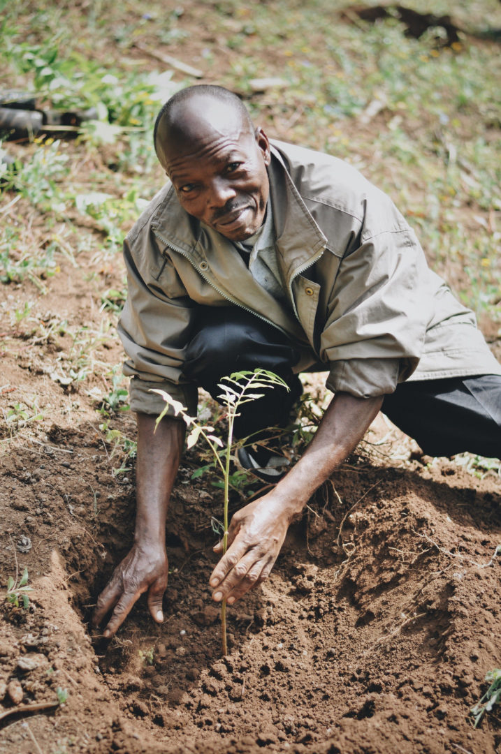 Meet the Tanzanian farmer who knew the legacy of his family's farm was too important to abandon