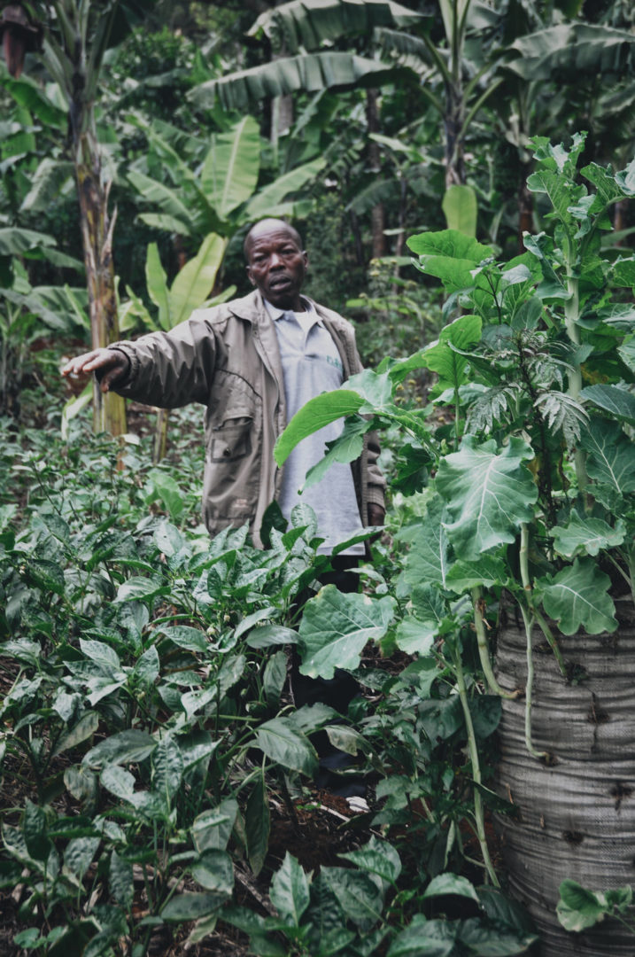 Julius honors his family through farming.