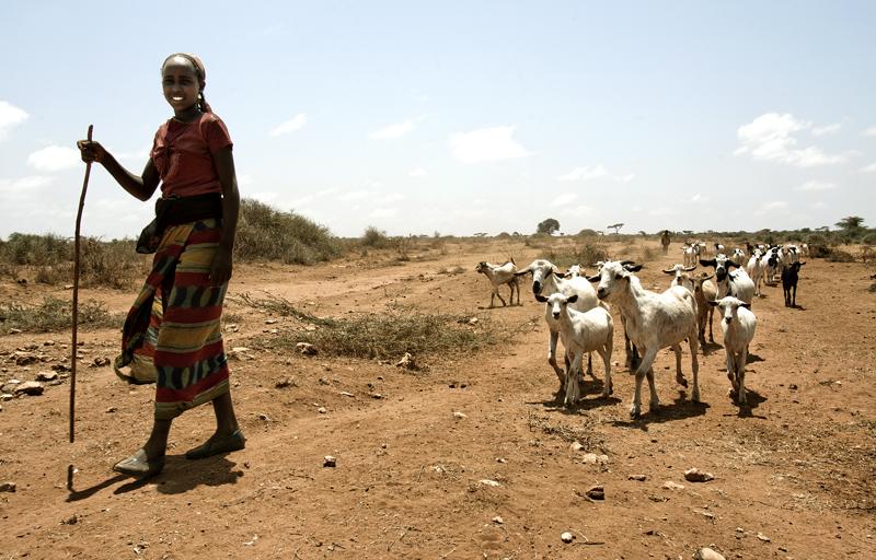 A herder in Eastern Kenya.