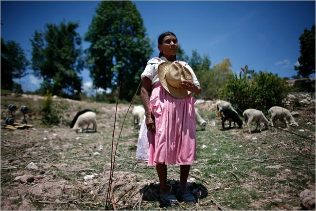 Women Reclaiming Lives: Social, Economic & Environmental Justice in Oaxaca, Mexico