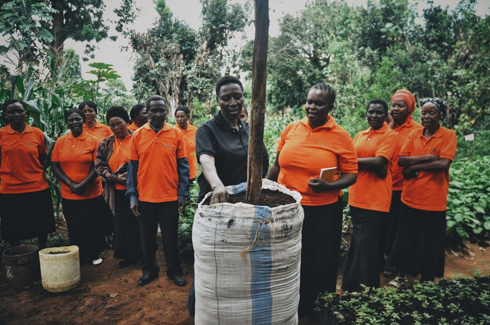Sack Gardens provide solutions to farmers