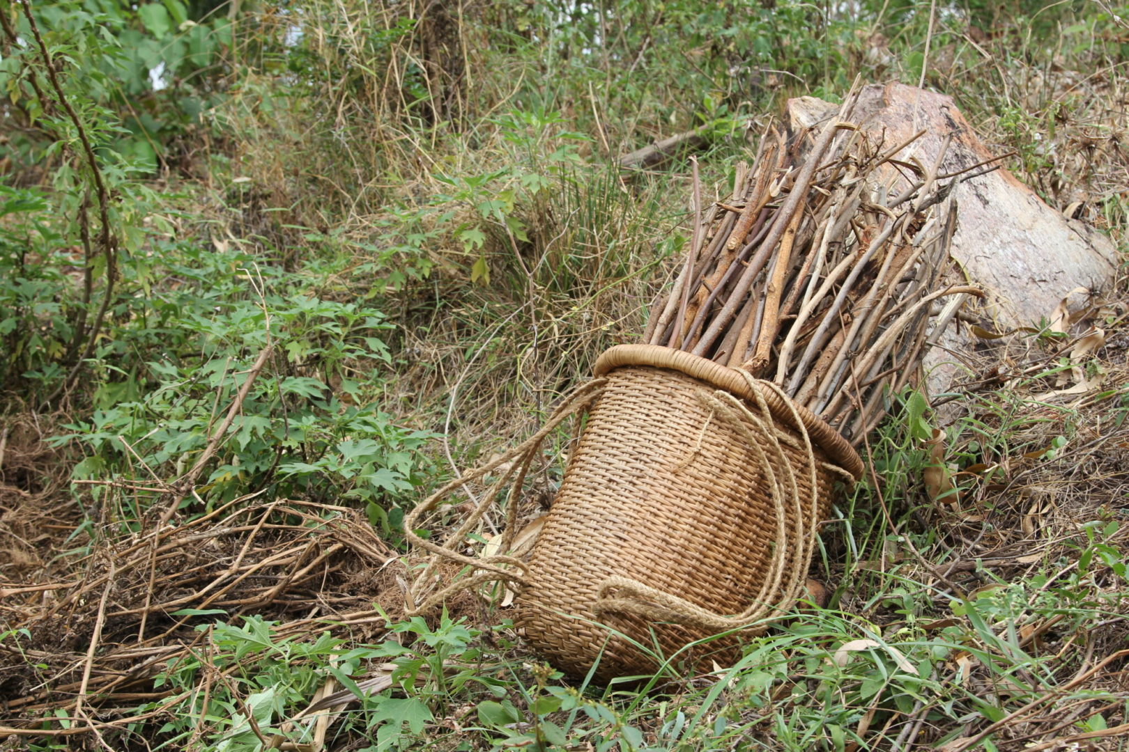 Improved land management practices can help build climate resilience in the Democratic Republic of Congo