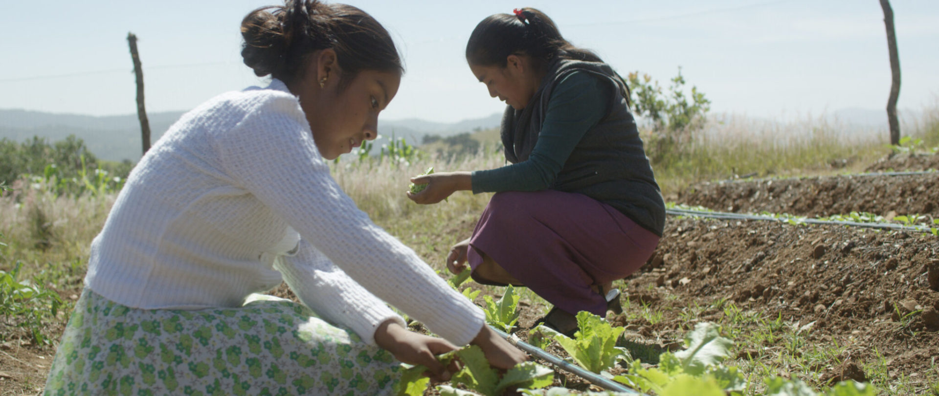 Passing a healthy environment to future generations is a priority to our partners.