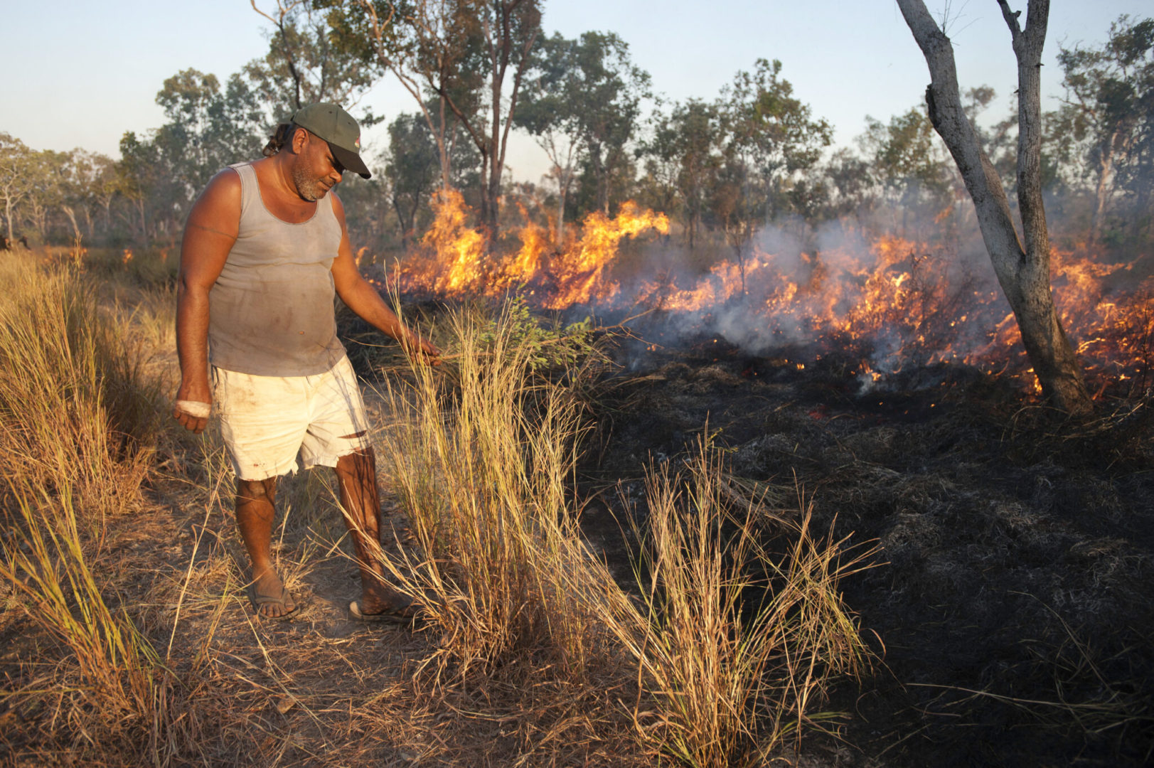Field Burning damages soil and increases carbon emissions