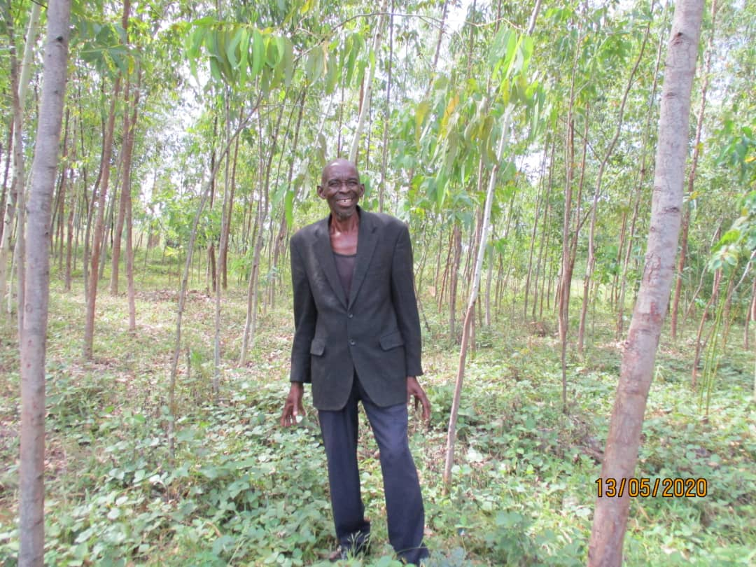 A recent photo of Samuel's woodlot, sent to us by our DRC partners