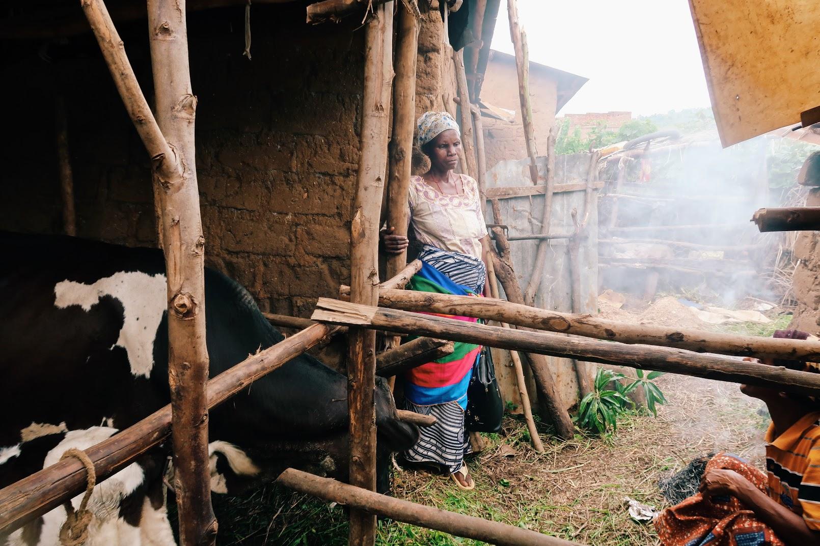 Taken by: Plant With Purpose (Floresta) Burundi Location: Mugere, Burundi